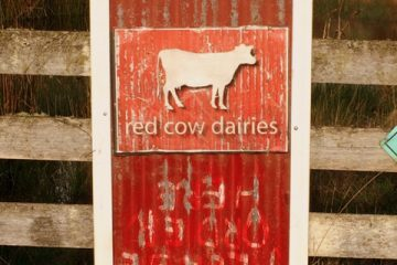 Red-Cow-Dairy