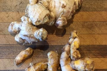 Fresh Ginger and Turmeric